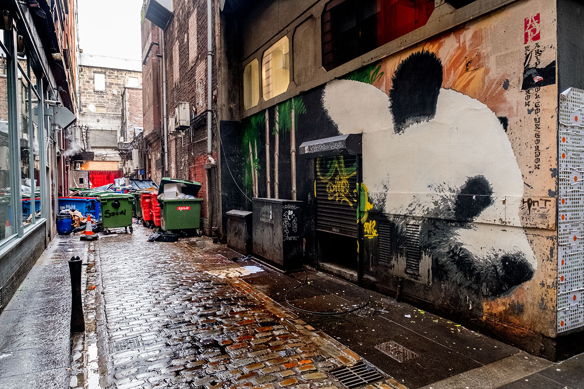 glasgow-streetart-panda