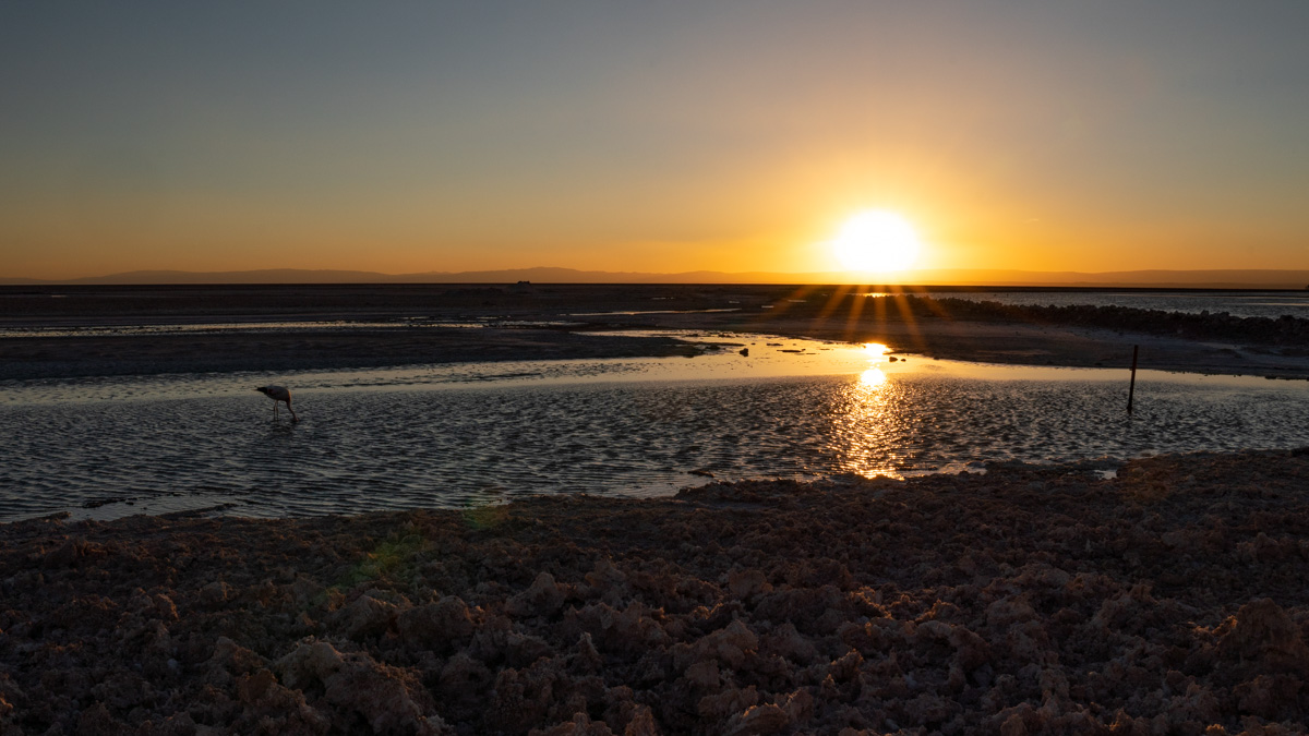 Lagune Chaxa Sonnenuntergang