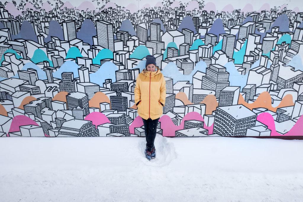 Street Art Edmonton Winter