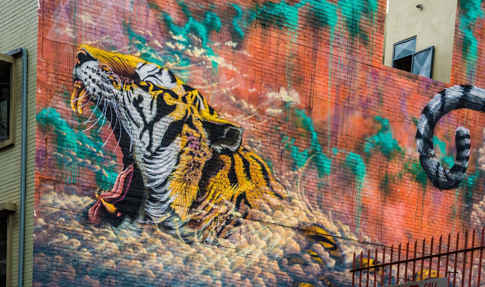 street-art-tiger-maboneng-johannesburg