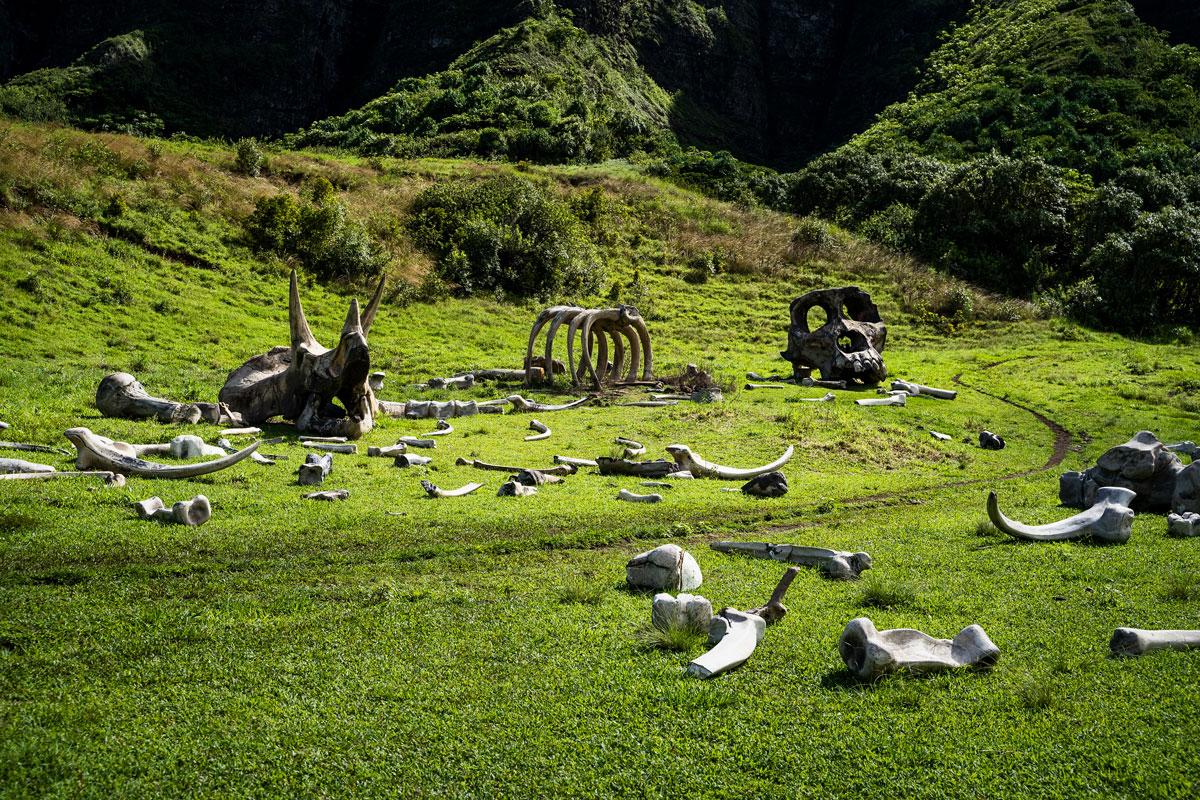 Oahu, Hawaii: 21 Orte, Aktivitäten und Tipps für die Insel O'ahu 41