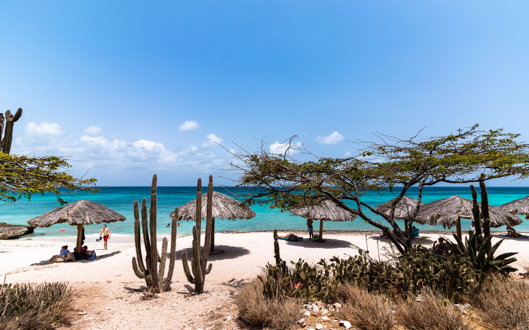 Kleiner aber feiner Arashi Beach in Aruba