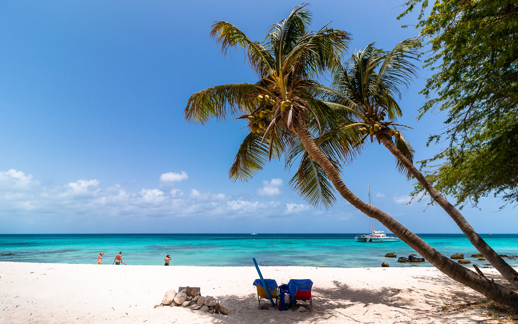 Boca Catalina, Palmen. Aruba