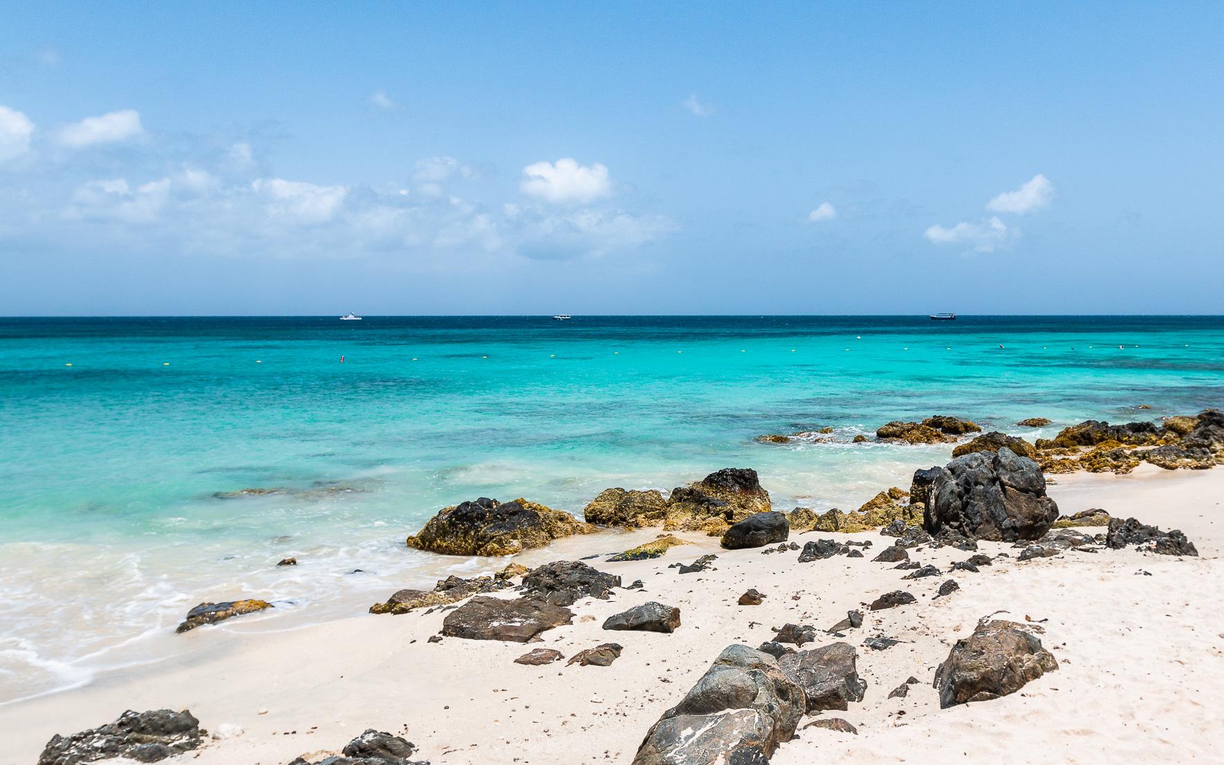 Natur Malmok Beach Aruba
