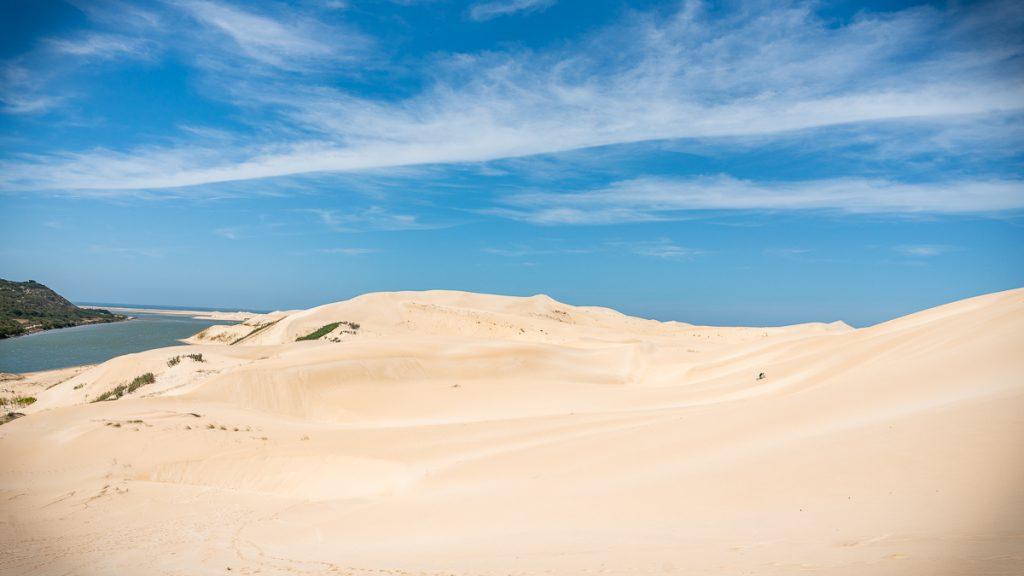 Sandboarden Woody Cape