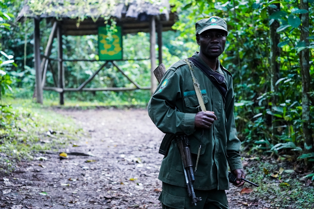 Highlights in Uganda: Gorillas, Löwen, Giraffen & Wasserprojekte 96