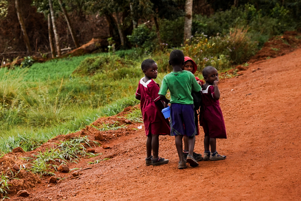 Highlights in Uganda: Gorillas, Löwen, Giraffen & Wasserprojekte 182