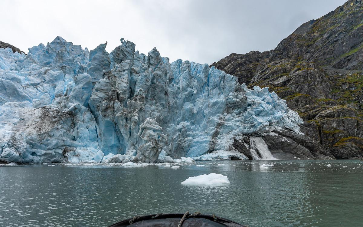 condor-gletscher-chile-patagonien