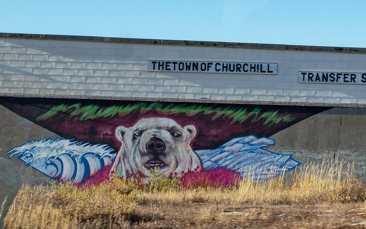Murals mit Eisbären