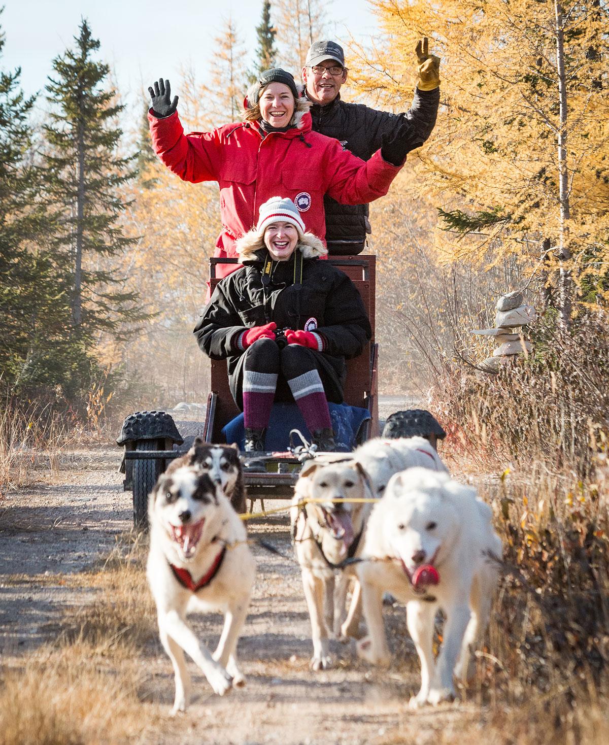 Hundeschlitten Churchill Wapusk Adventures