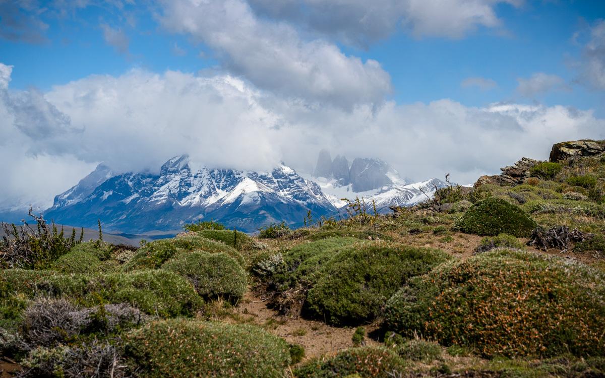 Blick auf Torres del Paine