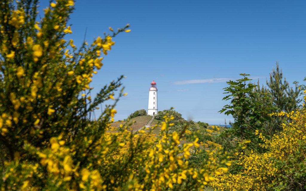 Rügen Urlaub: Die 11 schönsten Sehenswürdigkeiten neben Kreidefelsen & Königsstuhl 53