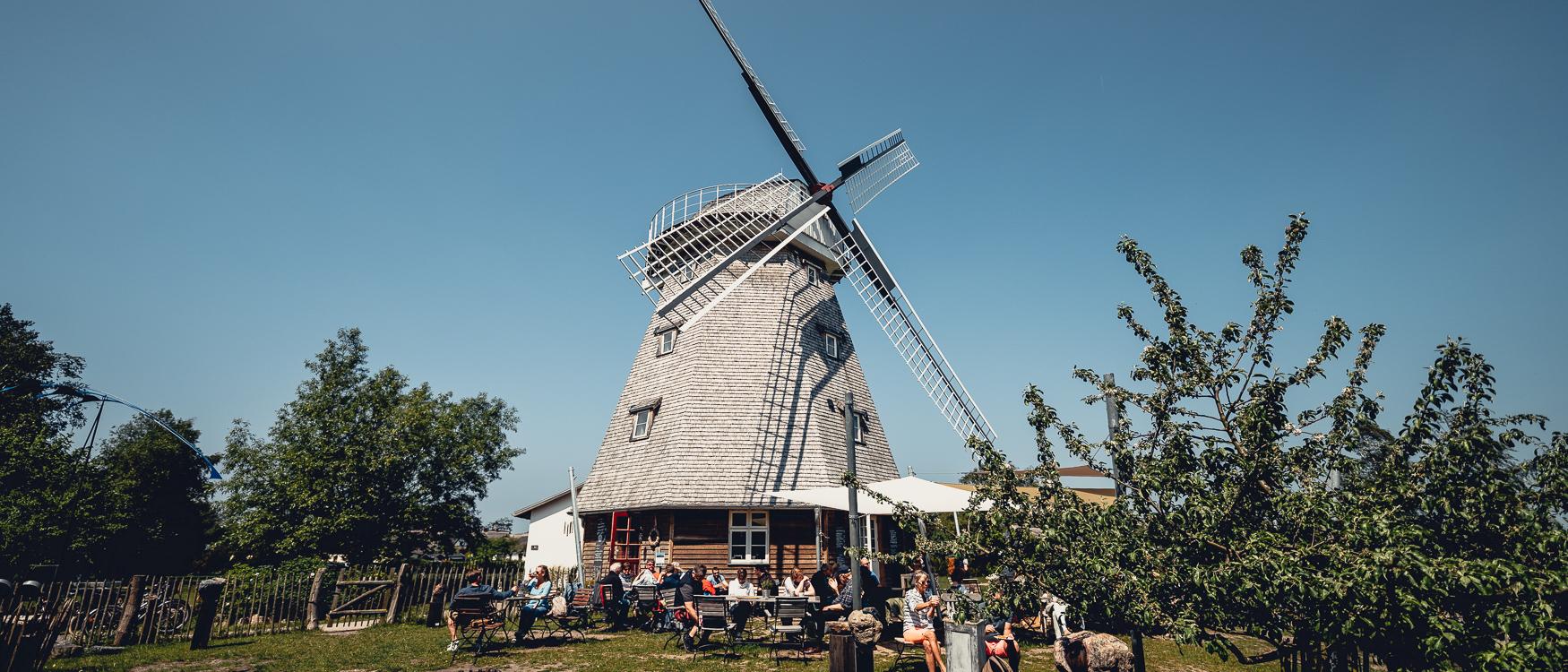 Mühle Ahrenshoop Fischland-Darß-Zingst