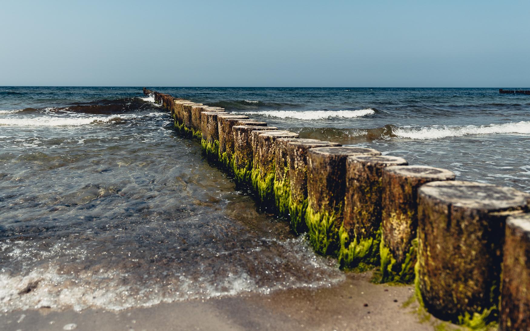 Buhnen am Strand in Ahrenshoop