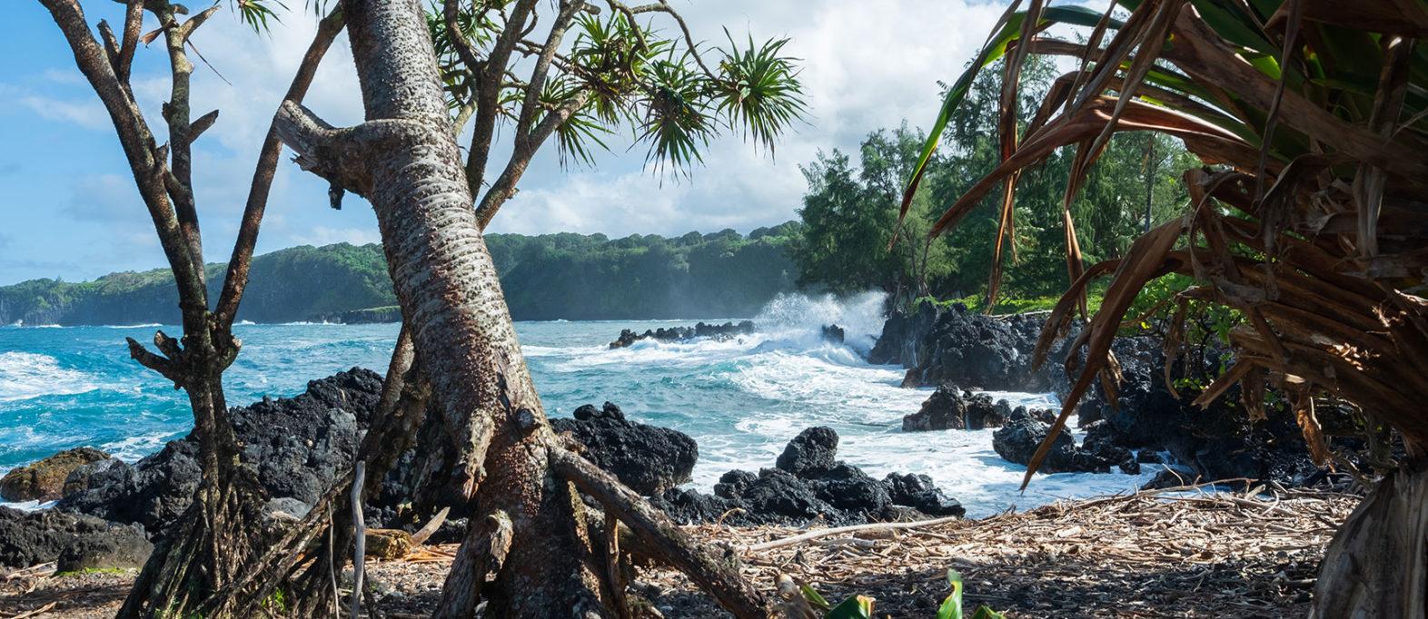 hawaii-tipps-maui-strand