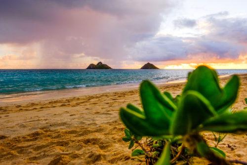 Waimanaolo Beach Oahu