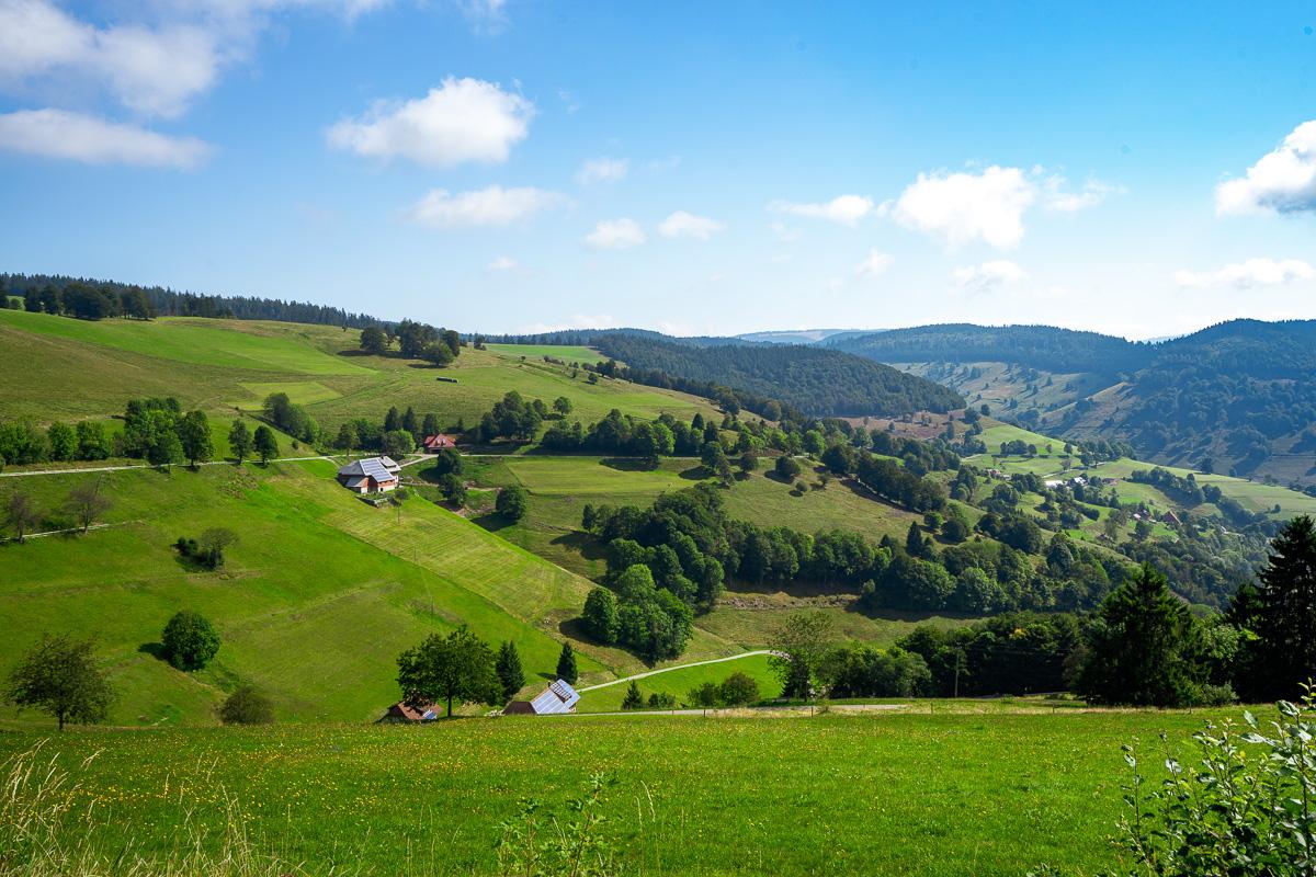 roadtrip-schwarzwald-blick-ins-tal