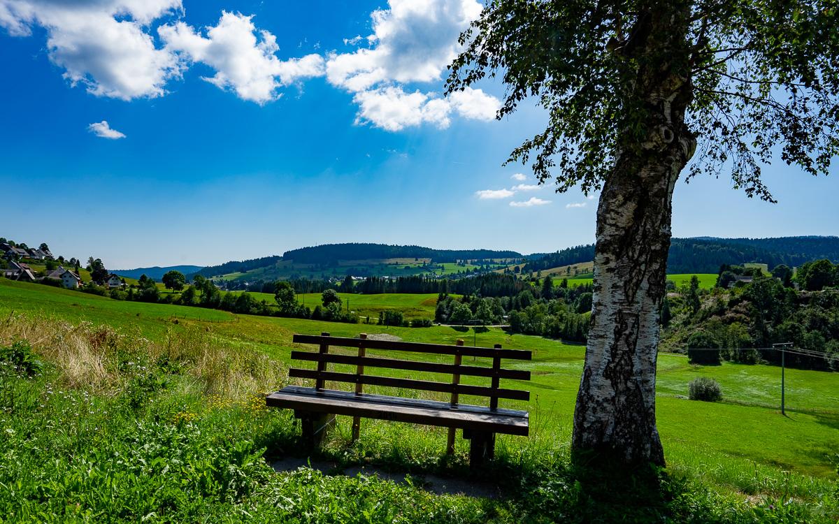 roadtrip-schwarzwald-blick-ins-tal-mit-bank