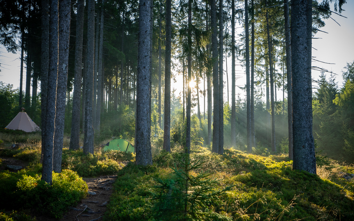 roadtrip-schwarzwald-schwarzwaldcamp