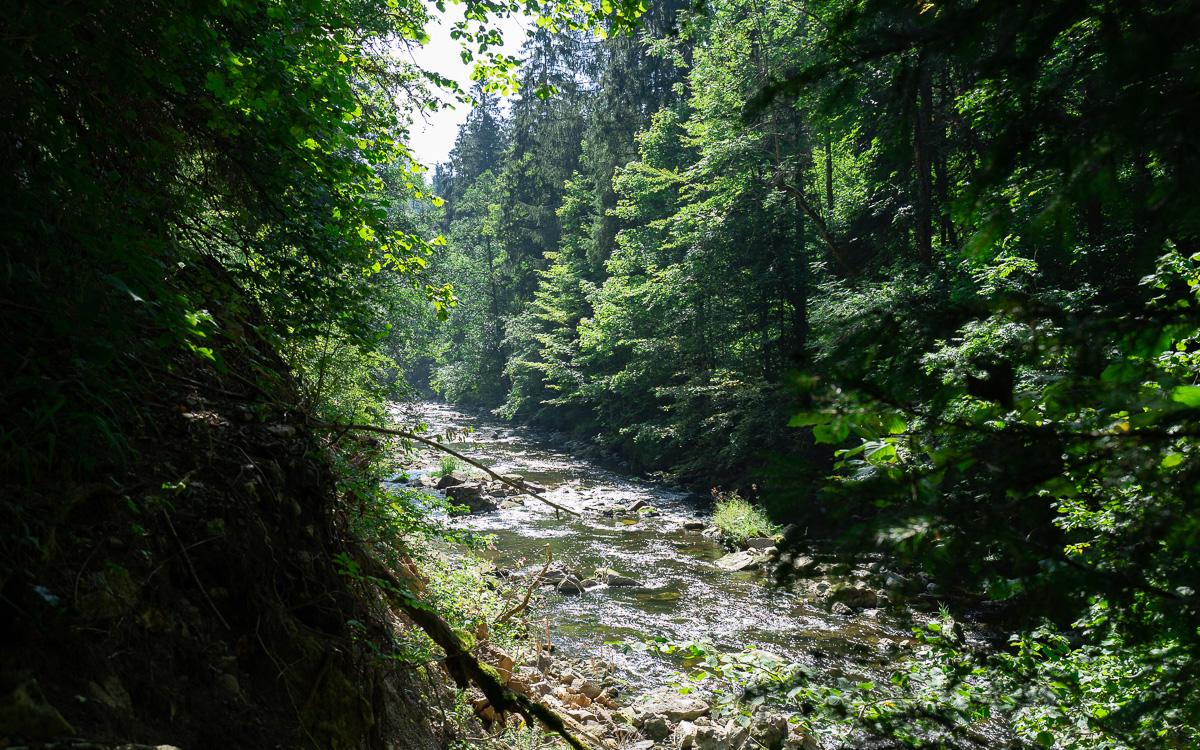 roadtrip-schwarzwald-wutachschlucht-wanderung