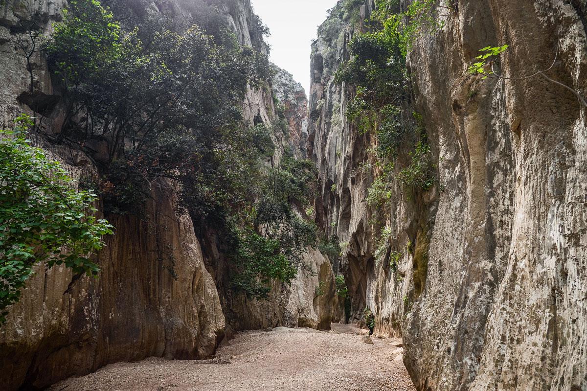 orrent de Pareis ist ein knapp 7 km lange Wanderung durch diese eben erwähnte Schlucht