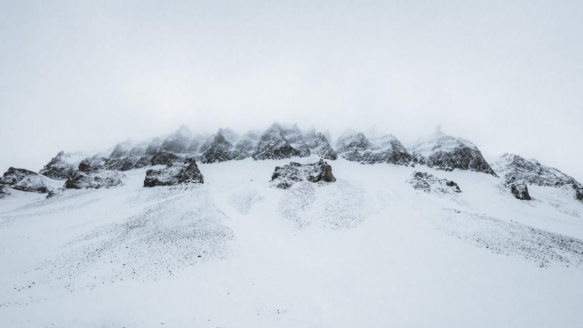 longyearbyen-tour-arctic-fox-suchen