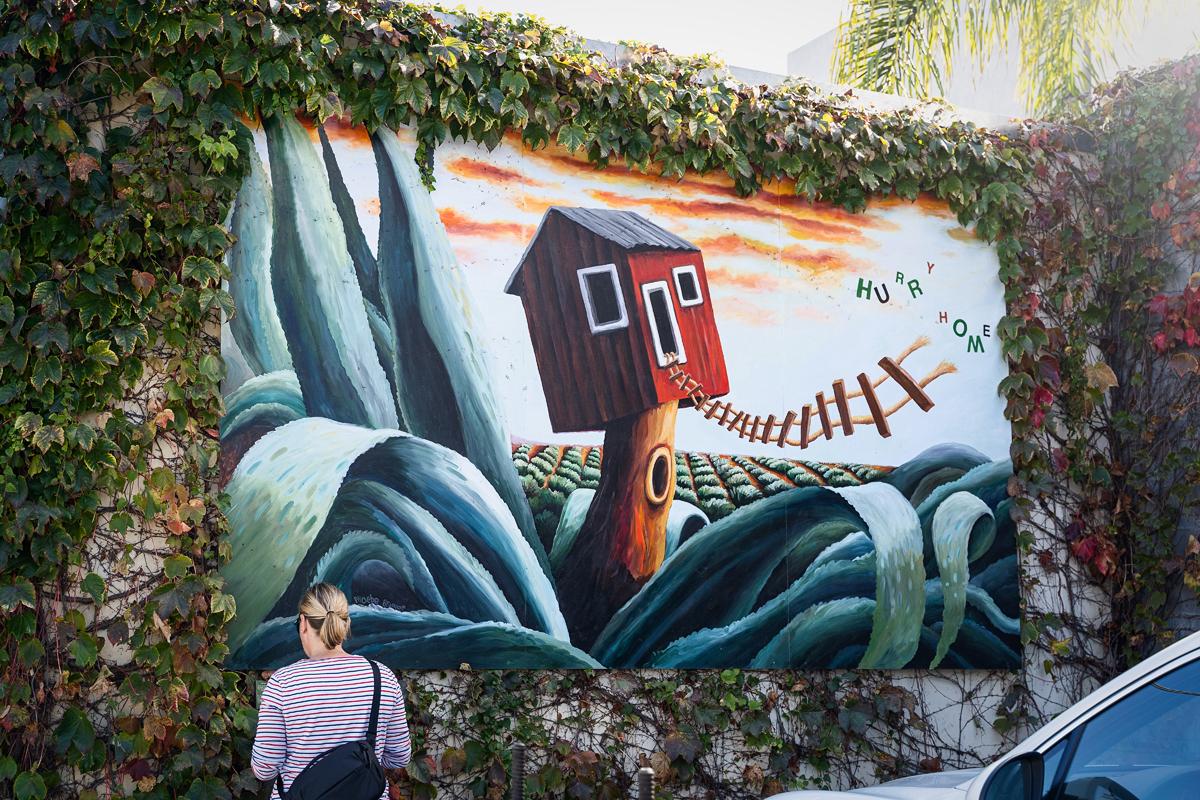 Street Art in Santa Barbara
