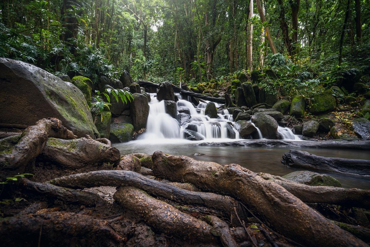 Wasserfälle Kauai Wailua River