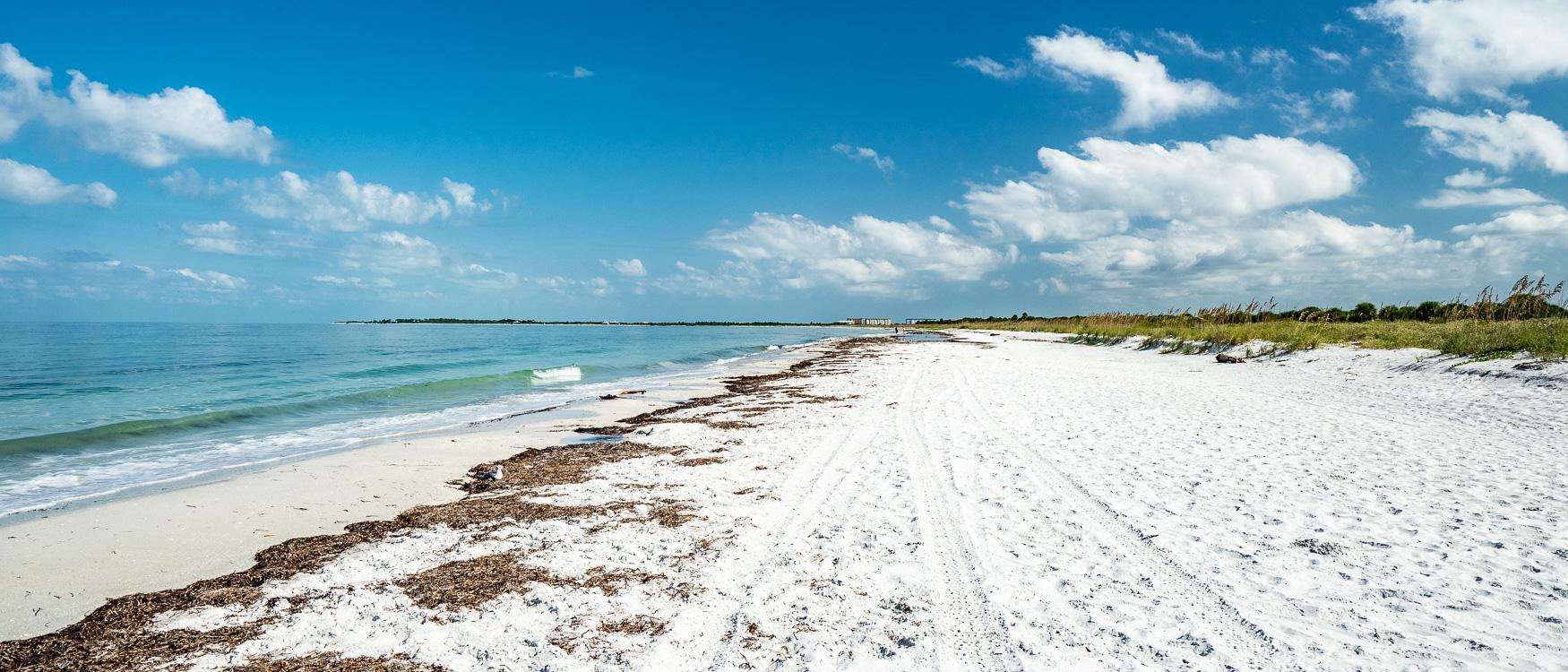 Caladesi Island Clearwater St. Pete Florida