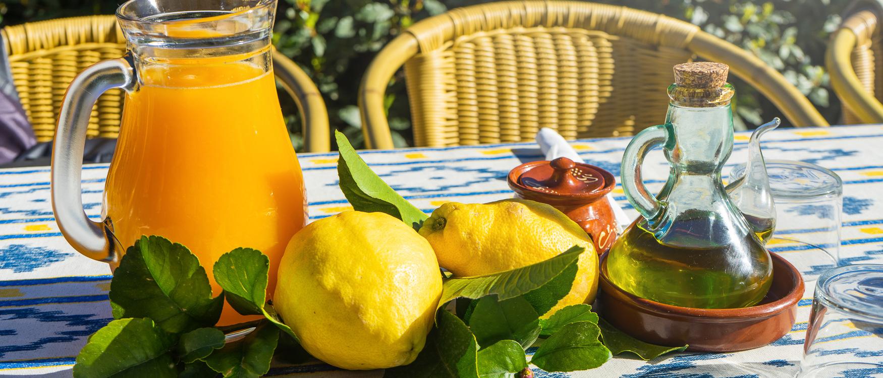 palma-sehenswuerdigkeiten-zitrusfruchte