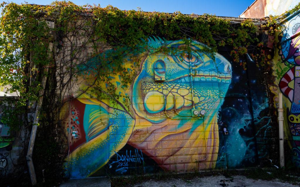 St. Petersburg & Clearwater Beach - Sehenswürdigkeiten und Tipps 13