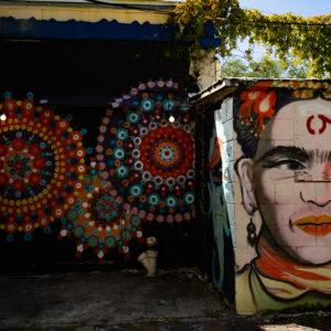 stpetersburg-stpete-sehenswuerdigkeiten-street-art-frida-kahlo