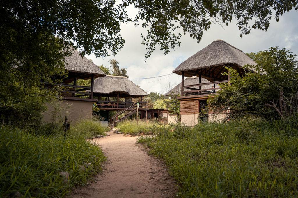 Ranger-Ausbildung in Südafrika mit EcoTraining 12
