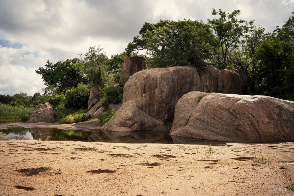 Ranger-Ausbildung in Südafrika mit EcoTraining 13