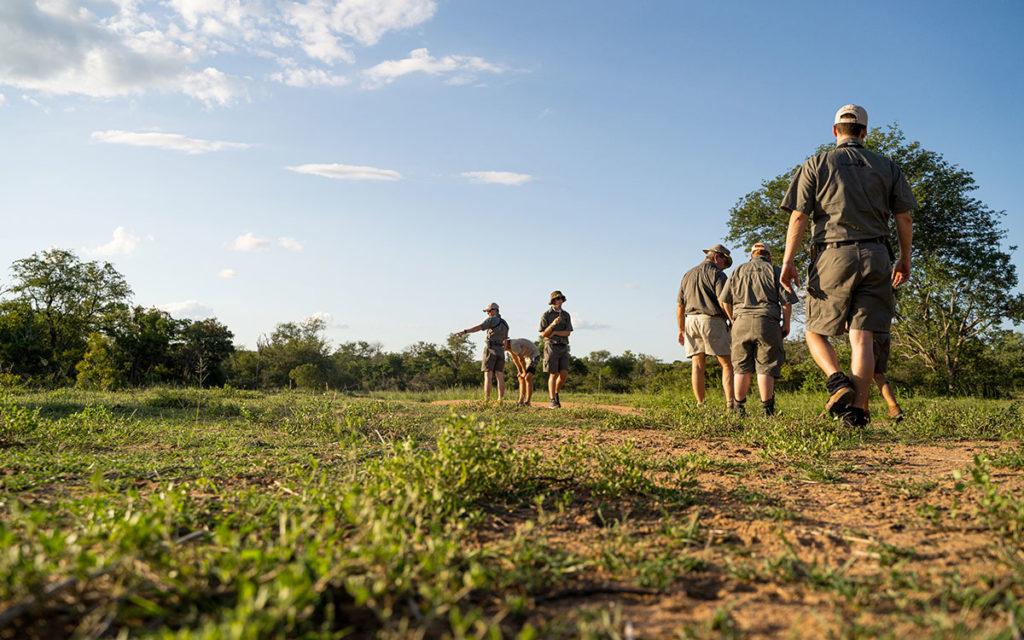 Spuren folgen Ranger-Ausbildung
