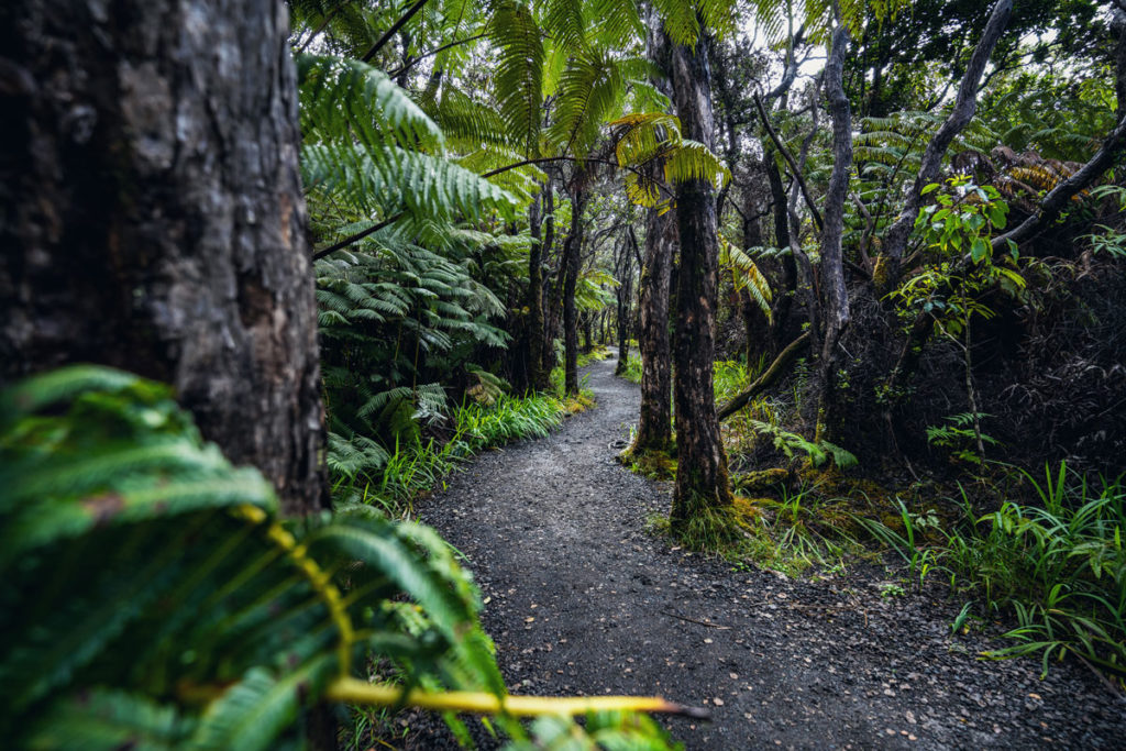 Big Island, Hawaii: Unsere Highlights auch ohne fließende Lava (2020) 9