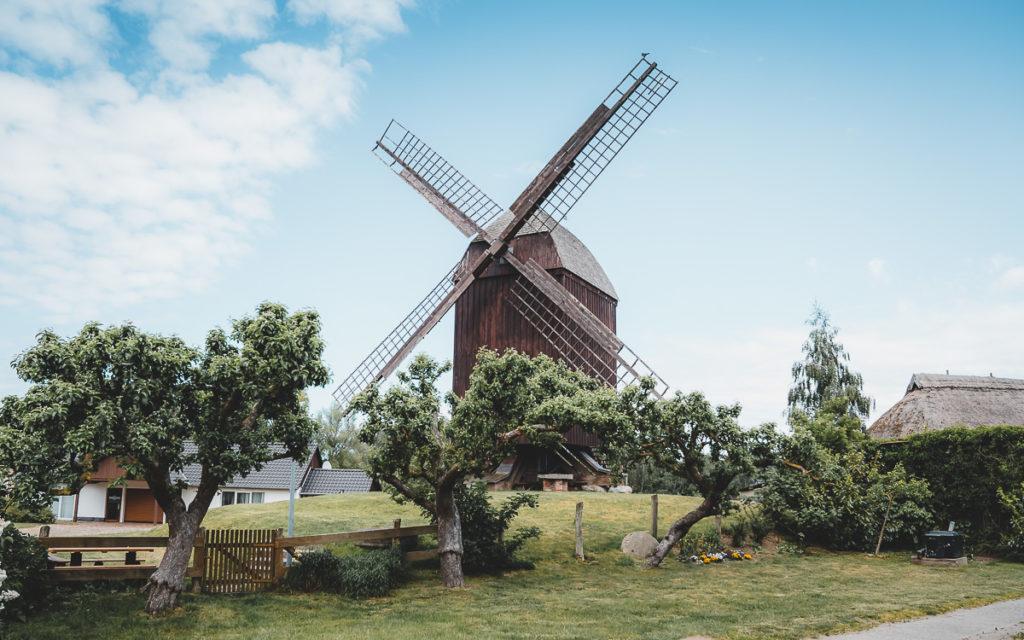 Greifswald Bockwindmühle Eldena