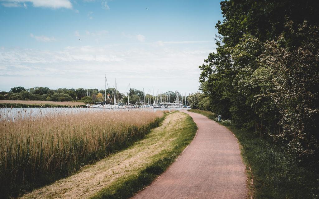 Greifswald: Sehenswürdigkeiten & Tipps für 1-2 Tage 22