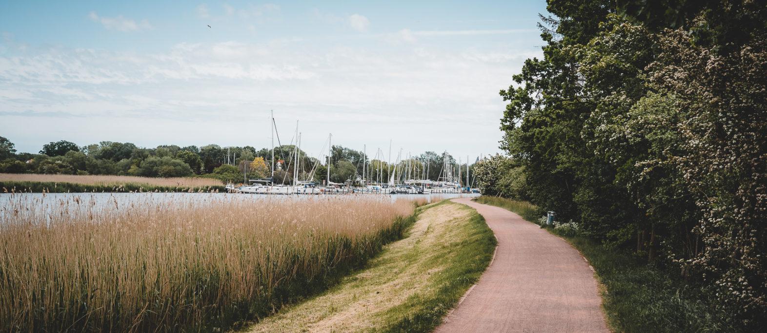 Fahrradweg nach Wieck Greifswald