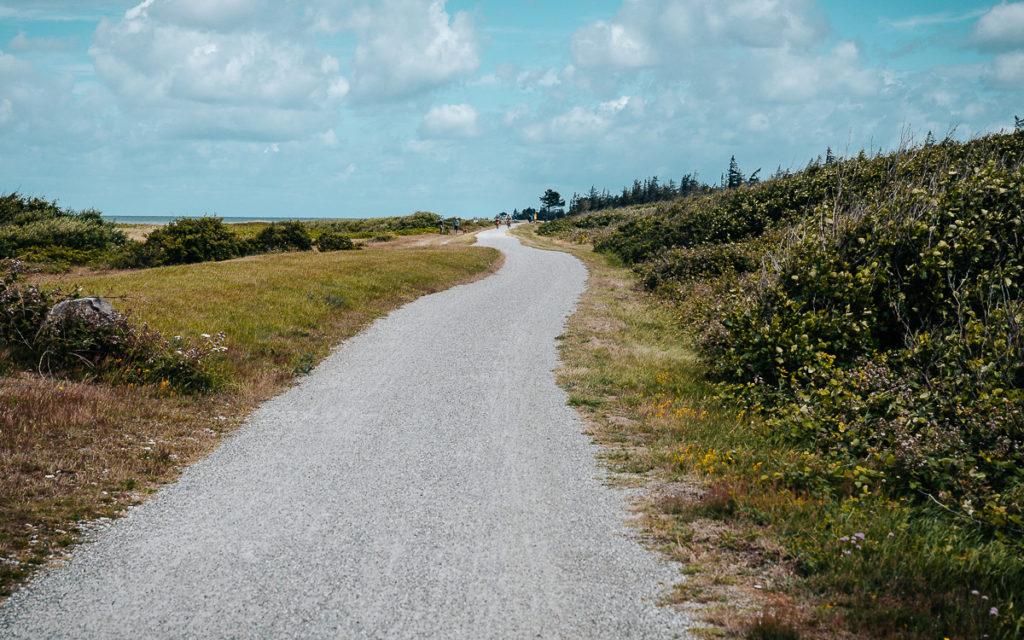 Flügger Strand Fahrrad fahren