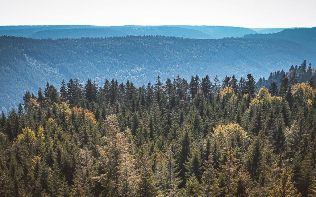 Bad Wildbad im Nordschwarzwald: Sehenswertes und Tipps für Ausflüge 7