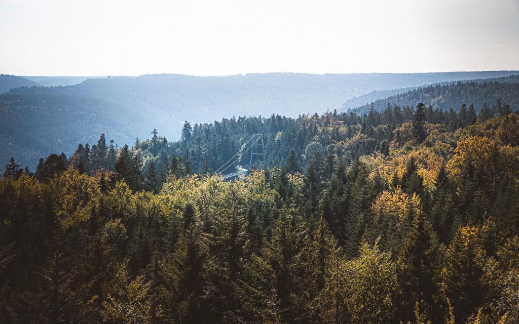 Bad Wildbad im Nordschwarzwald: Sehenswertes und Tipps für Ausflüge 14