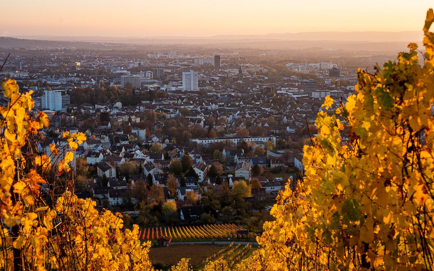 Heilbronn Wartberg Aussicht
