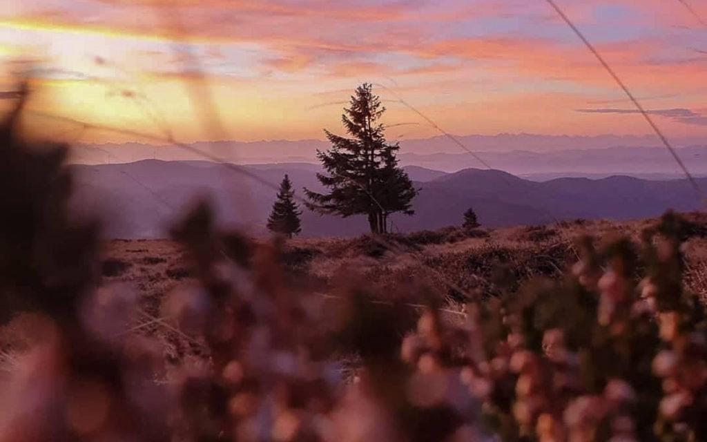 Sonnenaufgang Belchen Schwarzwald