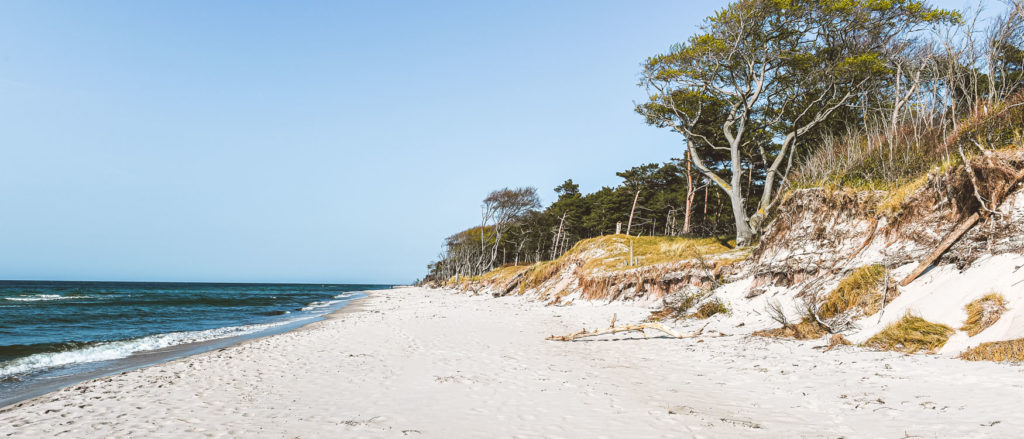 Ostsee Strand Darß Weststrand