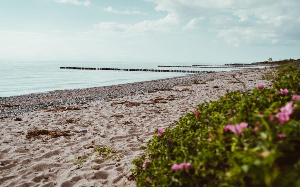 Insel Rügen Nonnewitz Sommerferien