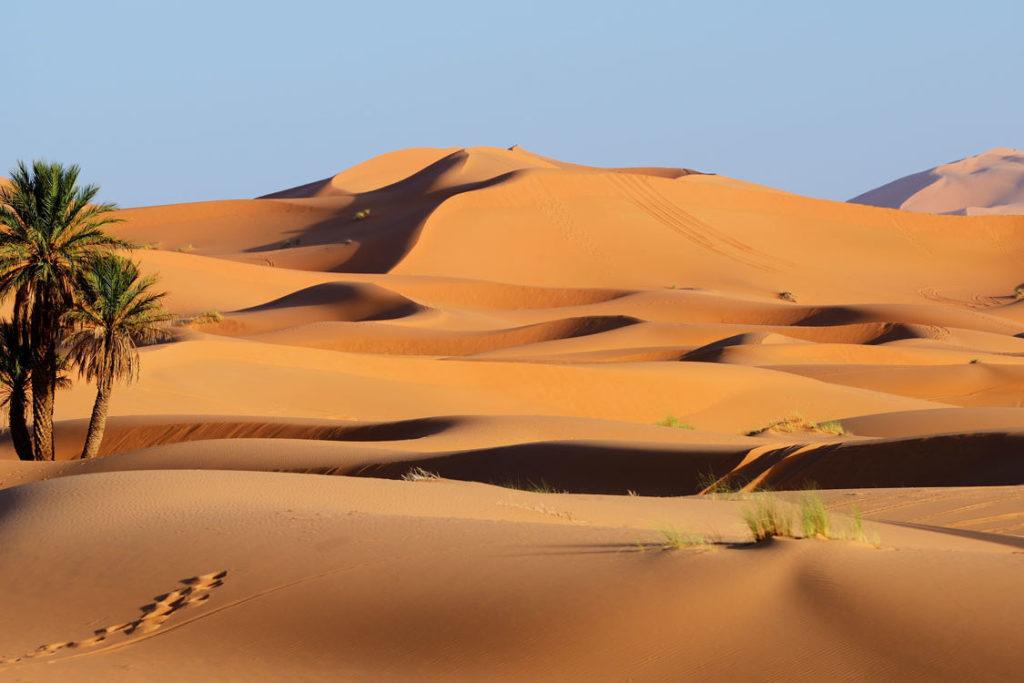Marokko Highlights Sahara Wüste