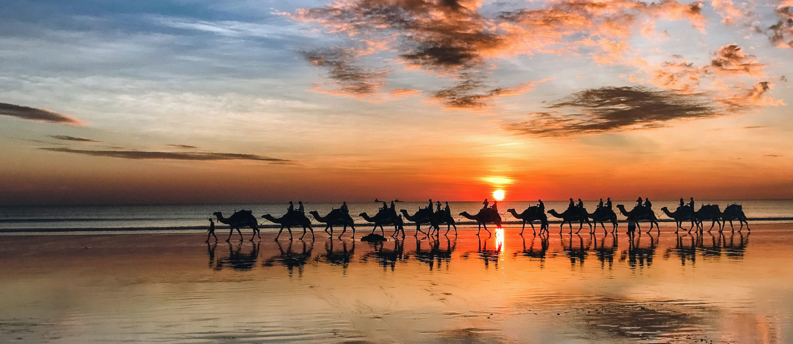 Westküste in Australien: Highlights mit Route & Tipps