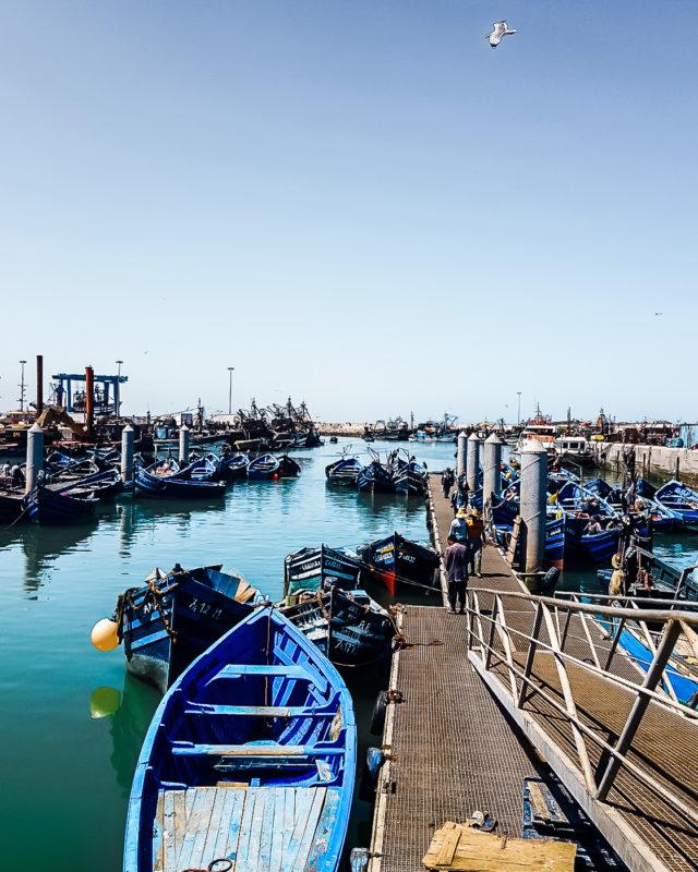 Essaouira in Marokko: Meine Highlights und Reisetipps 6