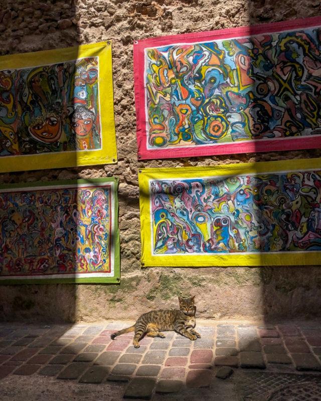 Essaouira in Marokko: Meine Highlights und Reisetipps 3